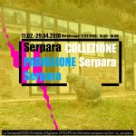 Collezione Serpara - Opere dalla collezione Wiedmer