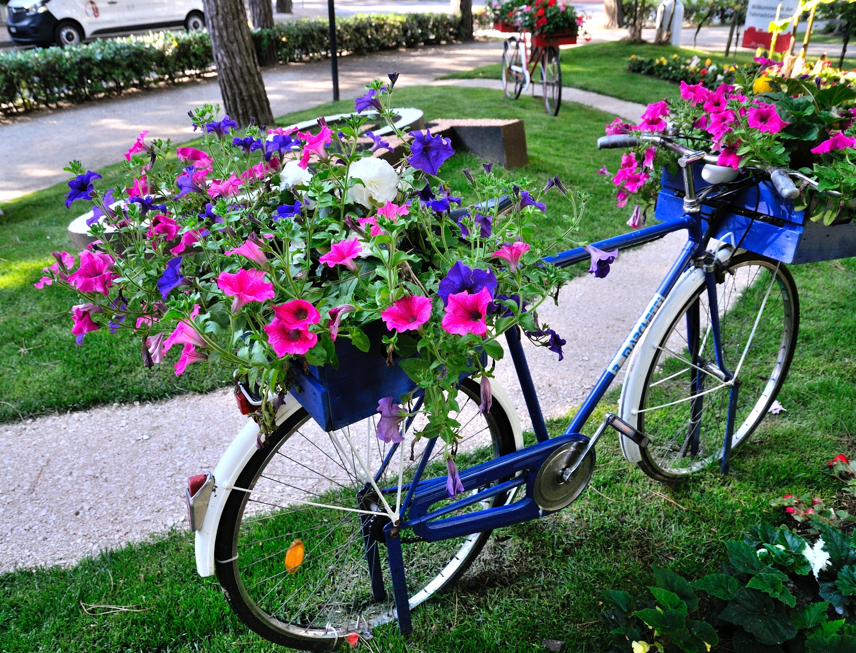 Cervia Città Giardino - La mostra d'arte floreale
