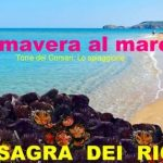 Sagra Dei Ricci