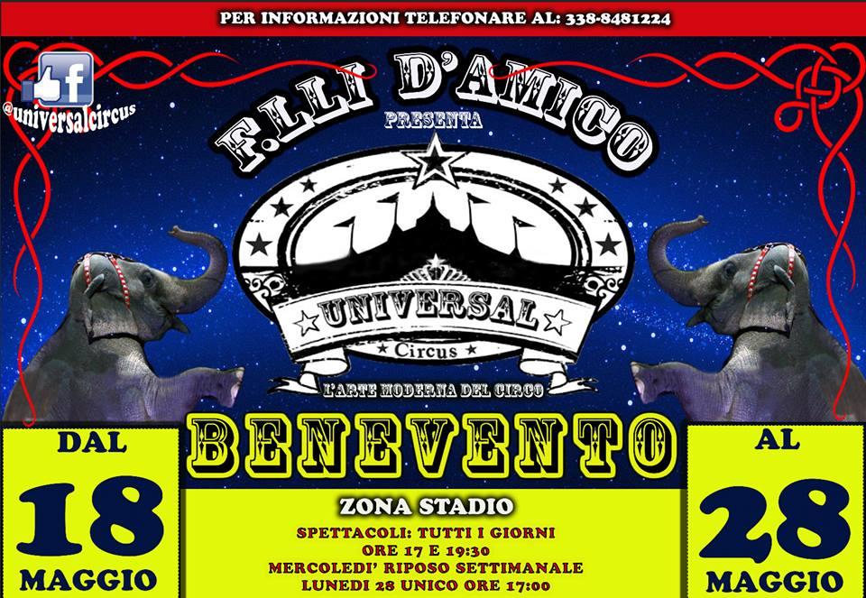 Universal Circus