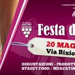 Festa del Vino in via Bixio a Parma