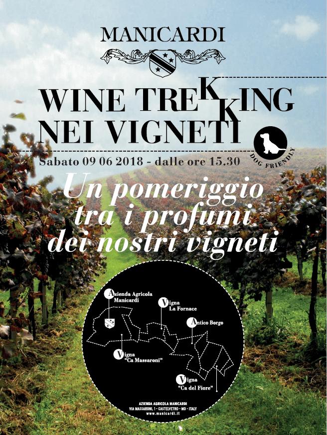 Wine Trekking tra i vigneti